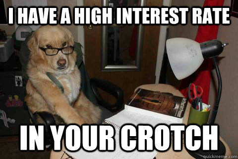 i have a high interest rate in your crotch - Financial Advice Dog