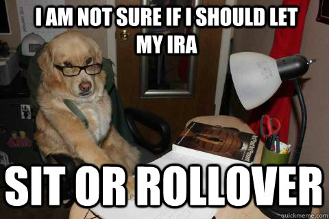 i am not sure if i should let my ira sit or rollover - Financial Advice Dog