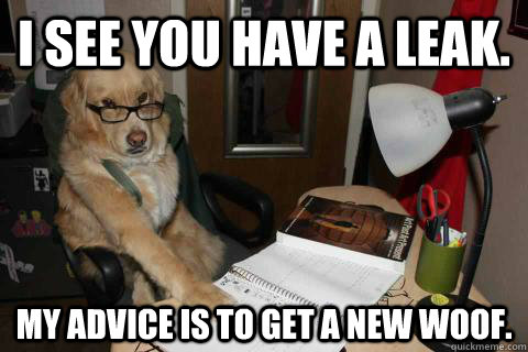 i see you have a leak my advice is to get a new woof - Financial Advice Dog