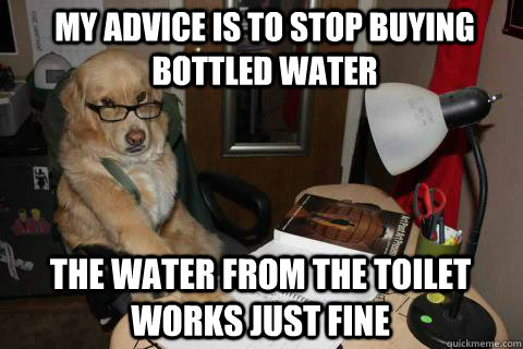 my advice is to stop buying bottled water the water from the - Financial Advice Dog