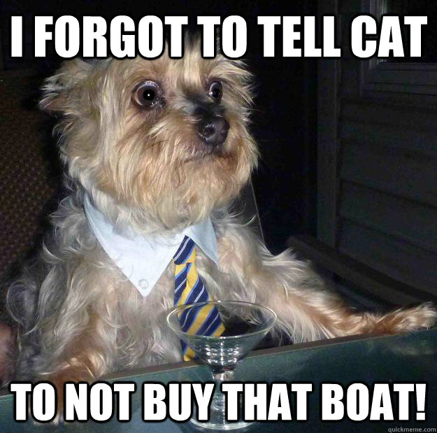 i forgot to tell cat to not buy that boat - Irresponsible Dog Father
