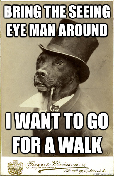 bring the seeing eye man around i want to go for a walk - Old Money Dog