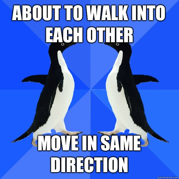 about to walk into each other move in same direction - Dancing penguins
