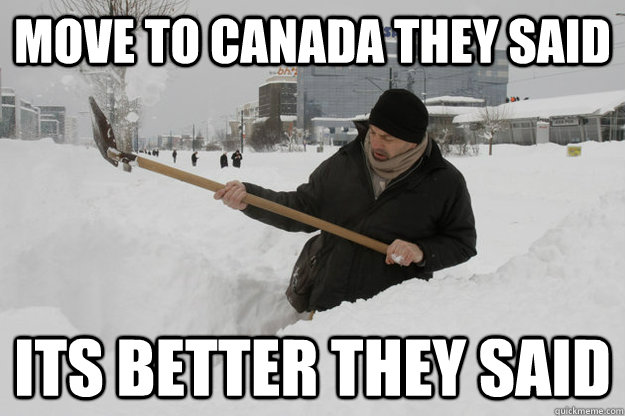 move to canada they said its better they said - Canadian Viking