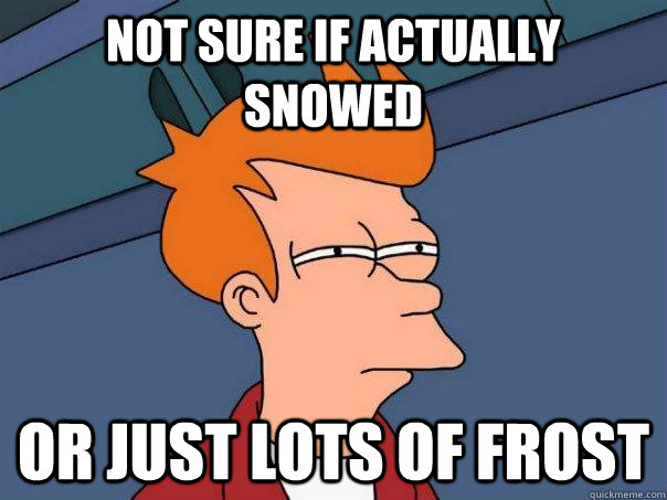 not sure if actually snowed or just lots of frost - Futurama Fry