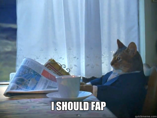 i should fap - The One Percent Cat