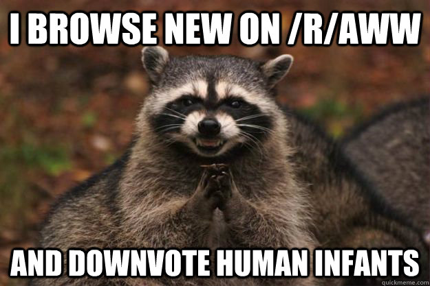 i browse new on raww and downvote human infants - Evil Plotting Raccoon