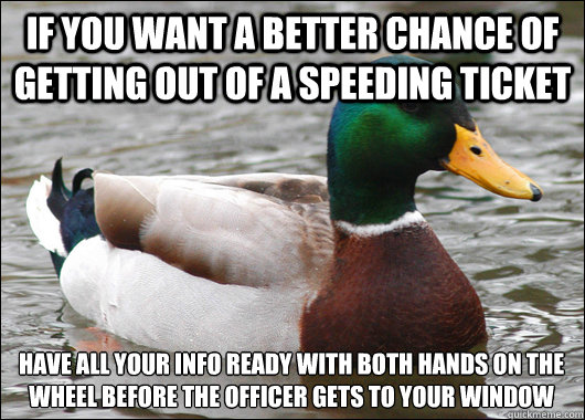 if you want a better chance of getting out of a speeding tic - Actual Advice Mallard