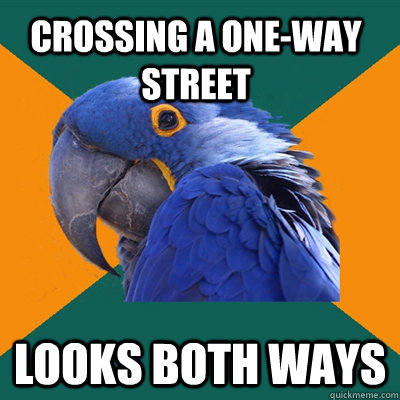 crossing a oneway street looks both ways - Paranoid Parrot