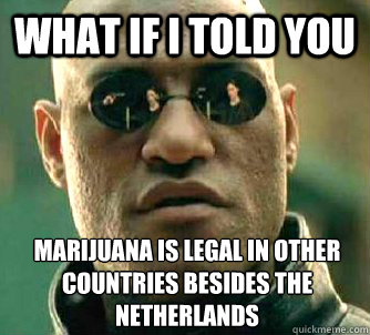 what if i told you marijuana is legal in other countries bes - What if I told you