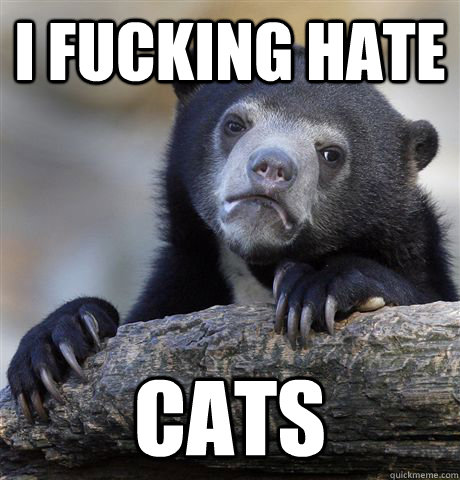 i fucking hate cats - Confession Bear