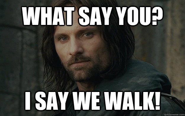 what say you i say we walk - Walk For Life Aragorn