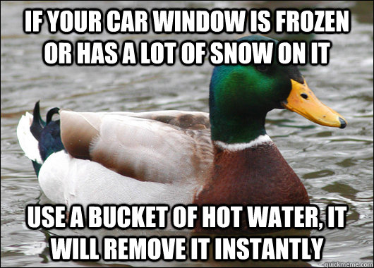 if your car window is frozen or has a lot of snow on it use - Actual Advice Mallard