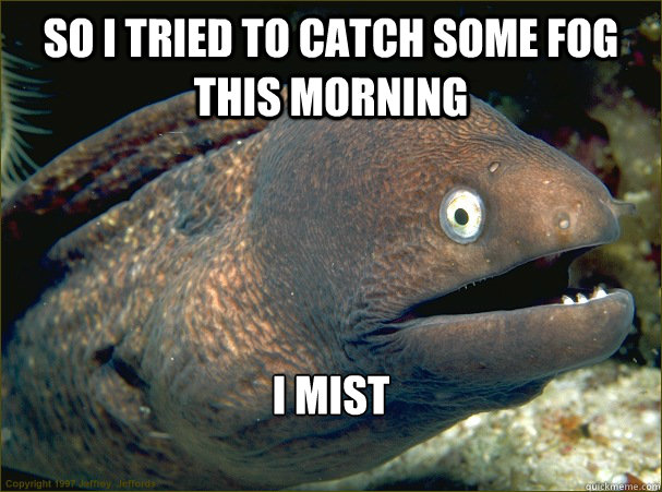 so i tried to catch some fog this morning i mist - Bad Joke Eel