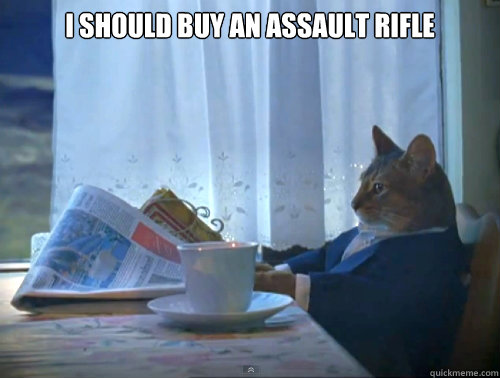 i should buy an assault rifle  - The One Percent Cat