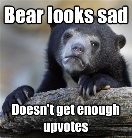 bear looks sad doesnt get enough upvotes - Confession Bear