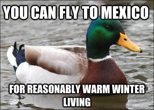 you can fly to mexico for reasonably warm winter living - Actual Advice Mallard