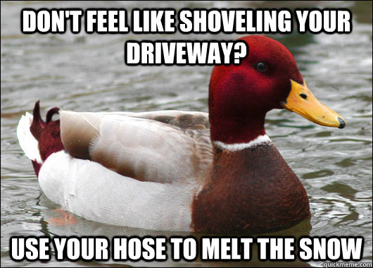 dont feel like shoveling your driveway use your hose to me - Malicious Advice Mallard