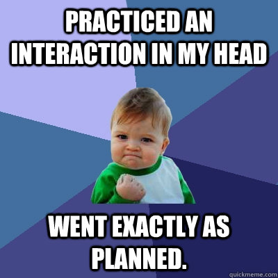 practiced an interaction in my head went exactly as planned - Success Kid