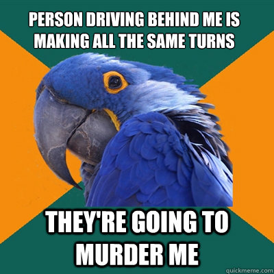 person driving behind me is making all the same turns theyr - Paranoid Parrot