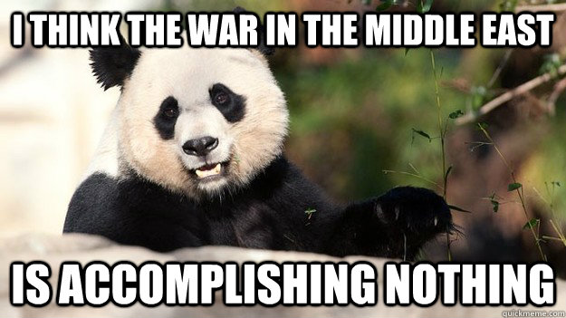 i think the war in the middle east is accomplishing nothing - Popular Opinion Panda