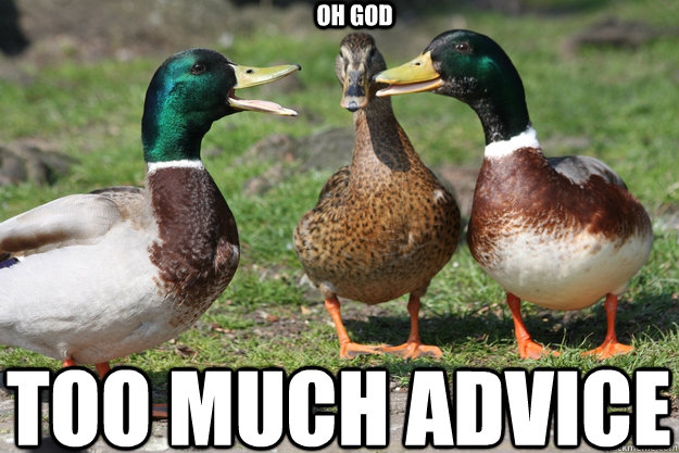 oh god too much advice - Redditor Duck