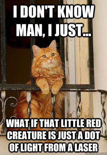 i dont know man i just what if that little red creature - Introspective Cat
