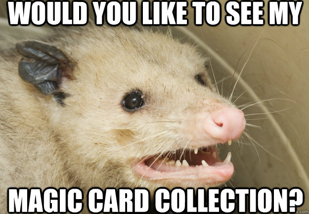 would you like to see my magic card collection - Pathetic Possum