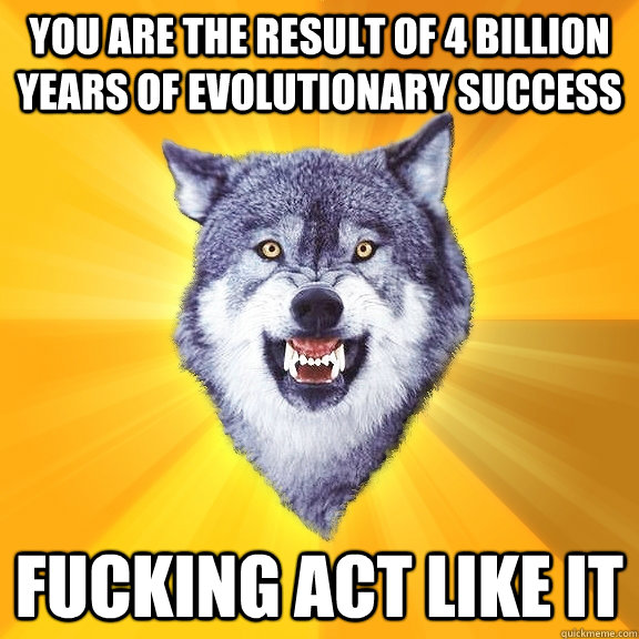 you are the result of 4 billion years of evolutionary succes - Courage Wolf