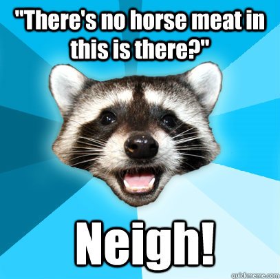 theres no horse meat in this is there neigh - Lame Pun Coon