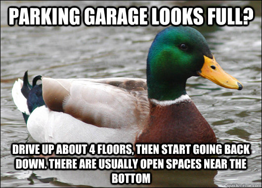 parking garage looks full drive up about 4 floors then sta - Actual Advice Mallard