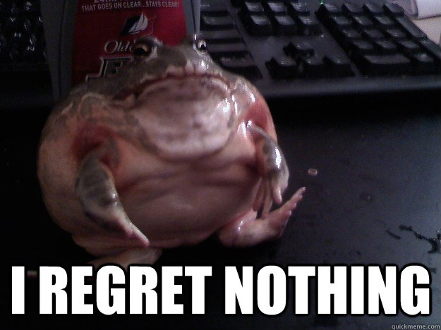 i regret nothing - Bud Frog
