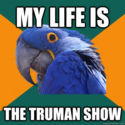 my life is the truman show - Paranoid Parrot