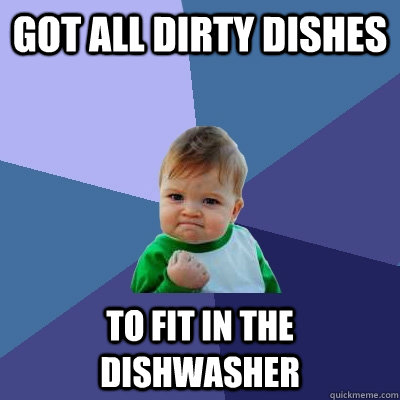 got all dirty dishes to fit in the dishwasher - Success Kid