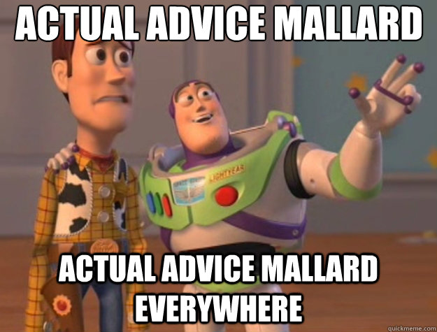 actual advice mallard actual advice mallard everywhere - Toy Story