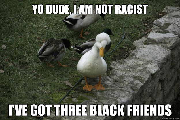 yo dude i am not racist ive got three black friends -
