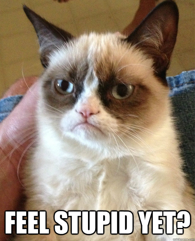 feel stupid yet - Grumpy cat