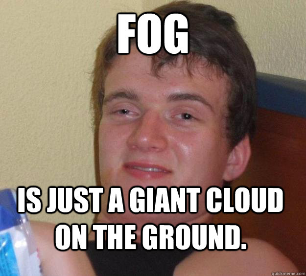 fog is just a giant cloud on the ground - 10 Guy
