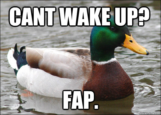 cant wake up fap caption 3 goes here - Actual Advice Mallard
