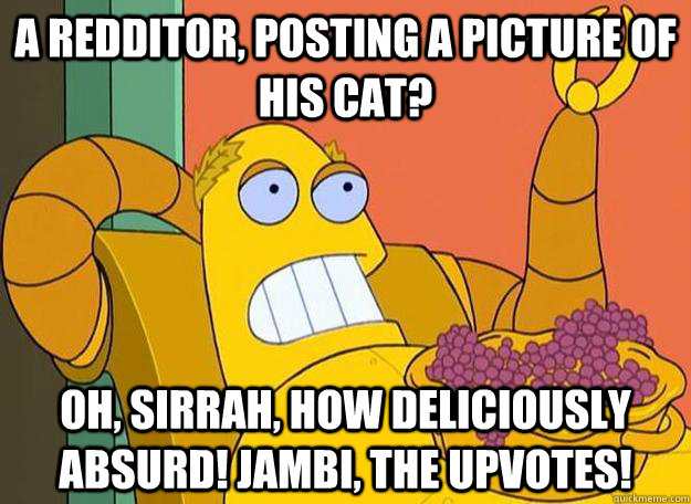 a redditor posting a picture of his cat oh sirrah how de - Hedonism Bot