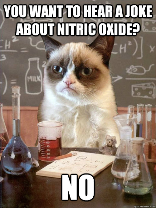 you want to hear a joke about nitric oxide no -
