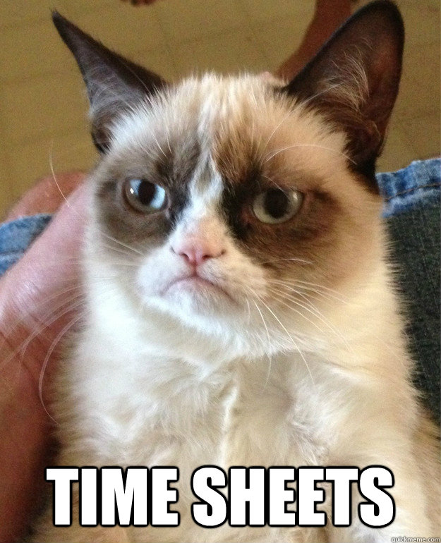 time sheets - Grumpy cat