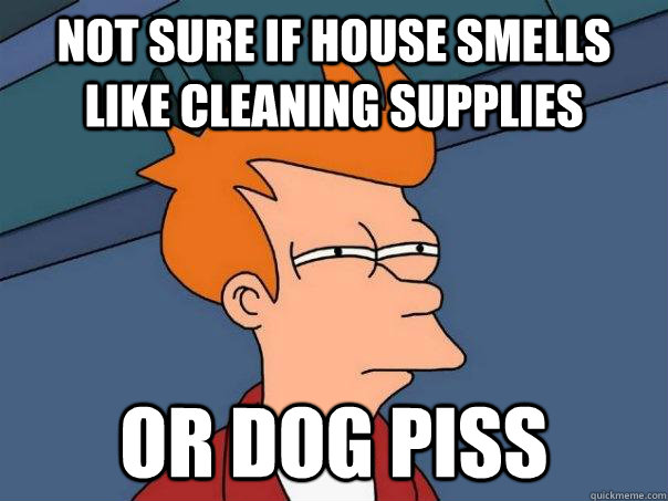 not sure if house smells like cleaning supplies or dog piss - Futurama Fry