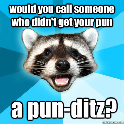 would you call someone who didnt get your pun a punditz - Lame Pun Coon