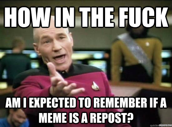 how in the fuck am i expected to remember if a meme is a rep - Annoyed Picard HD