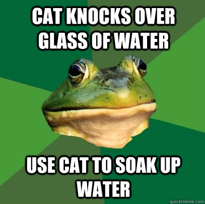 cat knocks over glass of water use cat to soak up water - Foul Bachelor Frog