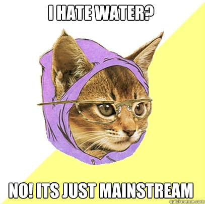 i hate water no its just mainstream - Hipster Kitty