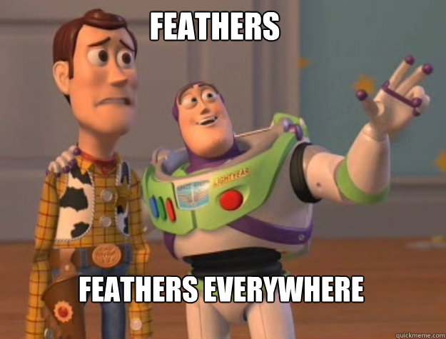 feathers feathers everywhere - buzz