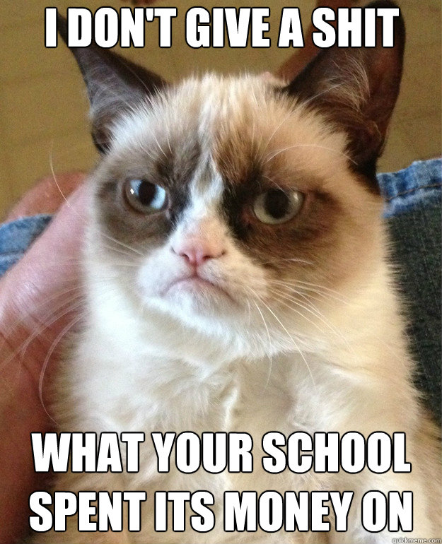 i dont give a shit what your school spent its money on - Grumpy Cat
