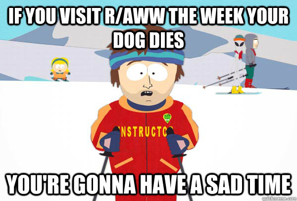 if you visit raww the week your dog dies youre gonna have  - Super Cool Ski Instructor